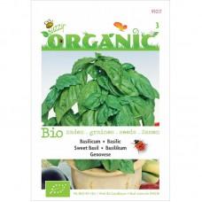 Buzzy® Organic Basilicum Genovese (BIO)